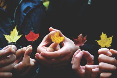 Slider Home 1 Five hands holding each a maple leaf // Accueil 1 Cinq mains tenant chacune une feuille d'érable